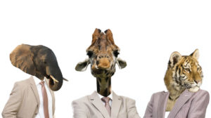 animals created for hiring campaign